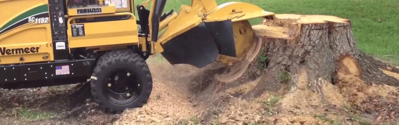 Reclaim your yard with our stump grinding services.